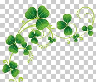 Ireland Saint Patrick's Day March 17 Shamrock Four-leaf Clover PNG