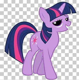 Twilight Sparkle Pinkie Pie Applejack Rarity Pony PNG