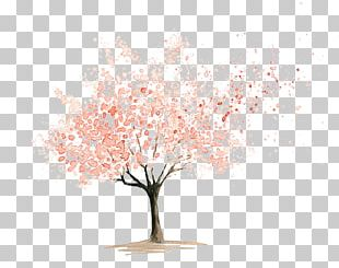 Flower Drawings Watercolor Painting Cherry Blossom Art PNG