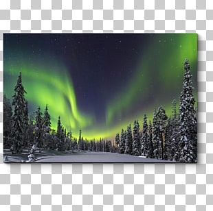 LED-backlit LCD Television Set 4K Resolution Bravia Ultra-high-definition Television PNG