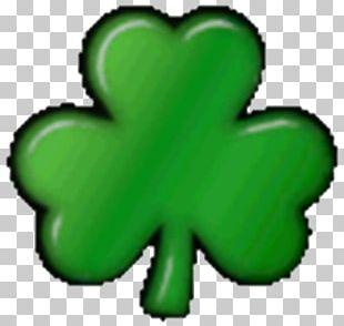 Shamrock Saint Patrick's Day Free Content PNG