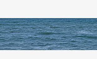 Sea Sea PNG