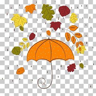 Autumn Rain PNG