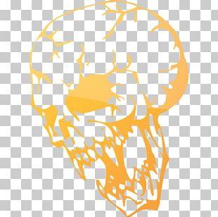 Stencil Human Skull Symbolism Air Brushes PNG