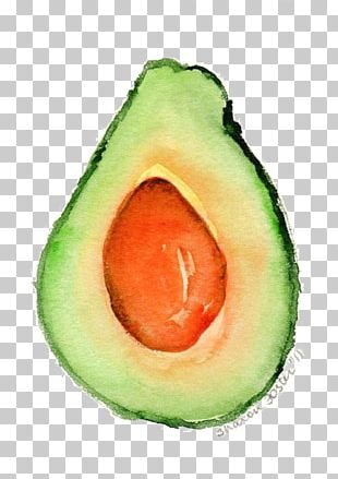 Avocado Watercolor Painting Fruit Food Compote PNG