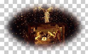 Christmas Tree Desktop Nativity Of Jesus Nativity Scene PNG