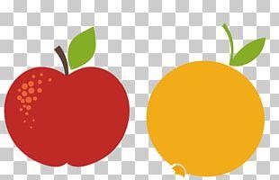 Apple Orange Red PNG