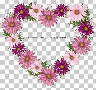 Thepix Common Daisy Pink PNG