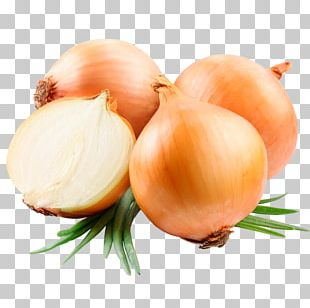 Vegetable Yellow Onion Food Ugam Exports Product PNG