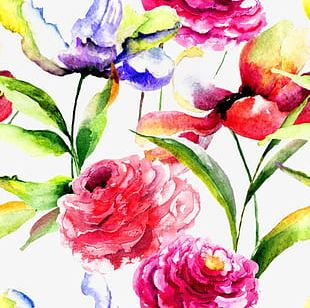 Beautiful Watercolor Flowers Background PNG