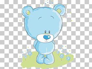 Teddy Bear Baby Polar Bears Infant PNG