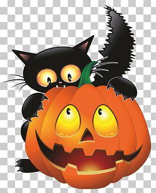 Cat Halloween PNG