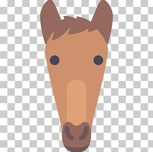 Horse Snout Toy Poodle Cat PNG