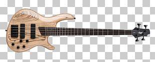 Fender Precision Bass Bass Guitar Cort Guitars Electric Guitar PNG