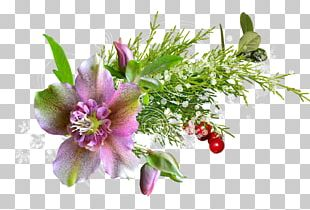 PhotoScape Flower PNG