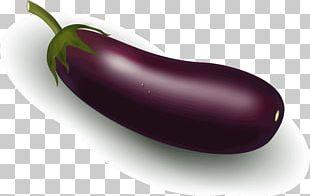 Serrano Pepper Jalapeño Eggplant Fruit Capsicum Annuum PNG