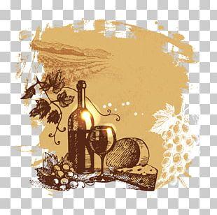 Wine Common Grape Vine Drawing Illustration PNG