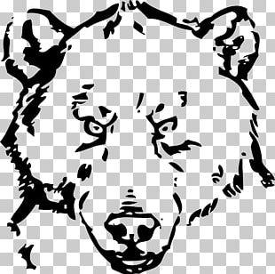 American Black Bear Polar Bear Brown Bear Giant Panda PNG