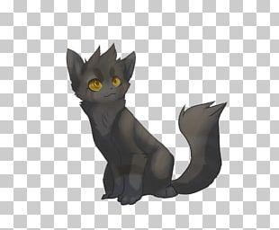 Korat Black Cat Kitten Whiskers Dog PNG