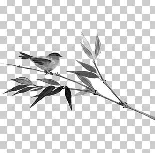 Ink Bamboo Bird PNG