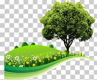 Tree Landscape Nature Drawing PNG