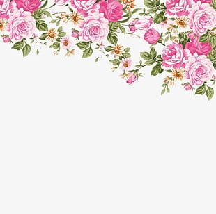 Hand-painted Roses Border PNG
