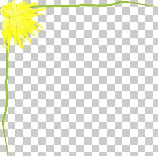 Flower Floral Design Leaf Plant Stem Petal PNG
