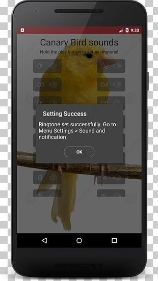 Smartphone Domestic Canary Bird Sounds PNG