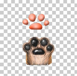 Cat Claw Dog Computer File PNG