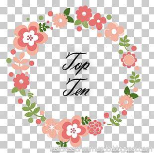 Floral Design Blog Cut Flowers PNG
