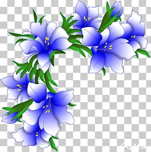 Portable Network Graphics Flower Adobe Photoshop GIF PNG