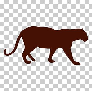 Panther Cat Cougar Lion PNG