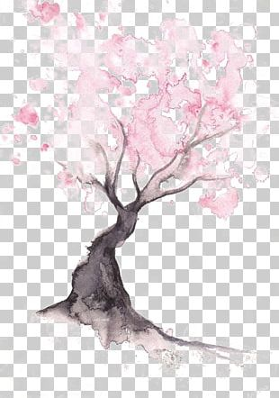 Paper Cherry Blossom Watercolor Painting Drawing PNG