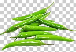 Indian Cuisine Chili Pepper Vegetable Vegetarian Cuisine Spice PNG