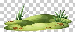 Lawn Garden Amphibian PNG