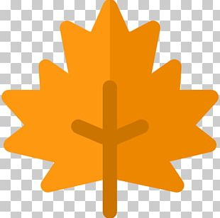 Maple Leaf Computer Icons PNG