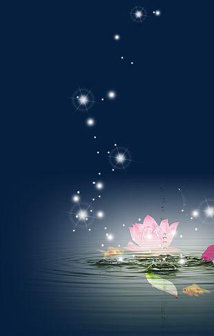 Lotus Star PNG