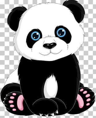Giant Panda T-shirt Cuteness PNG