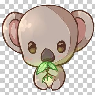 Koala Kavaii Drawing YouTube Paint Tool SAI PNG