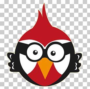 Woody Woodpecker Lytchett Matravers Primary School Red-headed Woodpecker PNG