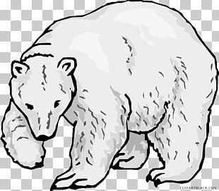 Polar Bear Endangered Species Coloring Book Arctic Fox PNG