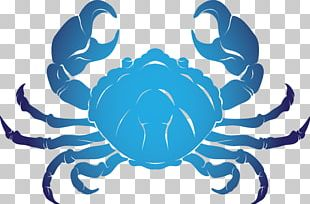 Crab Tattoo Stock Photography Illustration PNG
