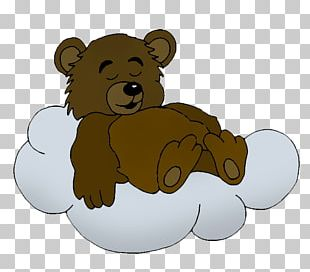 Brown Bear Drawing Polar Bear Teddy Bear PNG