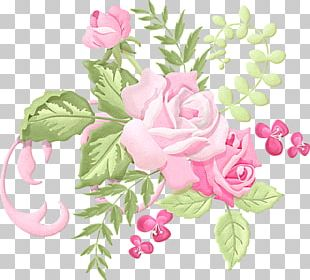Flower Rose Drawing PNG