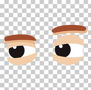 Eyebrow Cheek PNG
