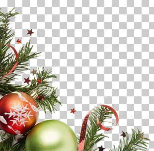 Christmas Ornament Christmas Tree Gift Christmas Decoration PNG
