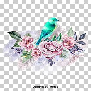 Rose Family Floral Design Illustration Flower PNG