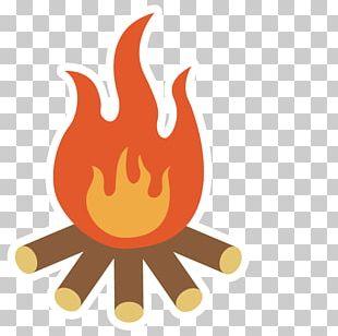 Campfire Camping Bonfire Illustration PNG