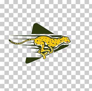 Cheetah Logo Graphic Design PNG