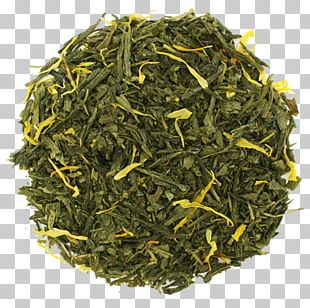 Gyokuro Nilgiri Tea Genmaicha Sencha PNG